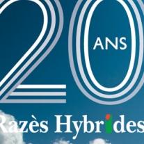 20 ans de Razès Hybrides avec  Arterris et KWS